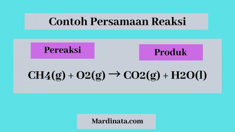 Persamaan Reaksi Kimia